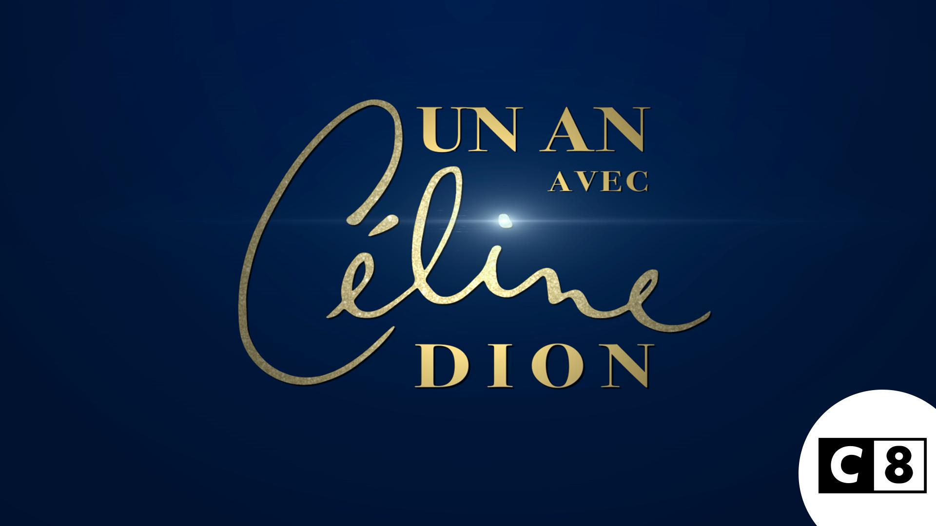 Affiche Un An avec Céline Dion